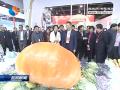 盐城农产品叫响大上海2018盐城名特优农产品(上海)专场推介活动在沪举办