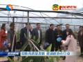 【人民政协】助推高质量发展 建湖政协在行动