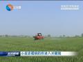 小麦赤霉病防控进入关键期