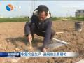 恢复农业生产田间地头春耕忙
