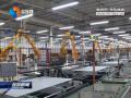 抓项目强载体优服务  扎实推进中韩(盐城)产业园建设