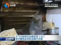 【大气污染综合治理攻坚】(26)部分餐饮店环保设施不完善