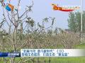 """【壮丽70年 奋斗新时代】(13)厚植生态底色  打造生态""""聚宝盆"""""""