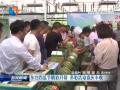 东台西瓜节精彩开幕  多彩活动喜庆丰收