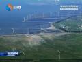 射阳举办中丹风电产业发展研讨会
