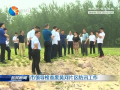 市領導檢查廢黃河片區防汛工作