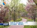 """【壯麗70年 奮斗新時代】(19)好生態擦亮""""城市底色"""""""