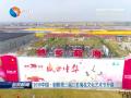 2019中国•射阳第三届江苏菊花文化艺术节开幕