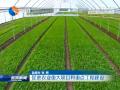促進農業重大項目和重點工程建設