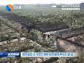 射阳旅投公司组织观摩国家储备林项目建设
