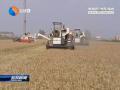我市將開展農業機械安全生產專項整治行動