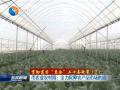 """【贯彻落实""""惠企""""二十条政策】市农业农村局:全力保障农产品市场供应"""