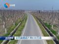 全市新增成片林8.82萬畝