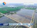 """做强现代农业产业园区 引领乡村振兴""""加速跑"""""""