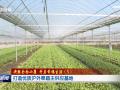 【决胜全面小康?开启幸福生活】(5)打造优质沪外果蔬主供应基地