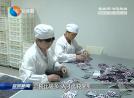 【接轨上海系列报道】(1)全面接轨上海推动盐沪融合发展