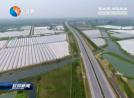 产业兴旺推动乡村高质量发展