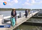 加快现代渔业高质量发展