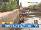 麋鹿不慎掉入水渠 眾人合力救助