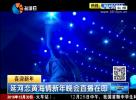 延河恋黄海情新年晚会直播在即