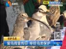 爱鸟周宣传日 呼吁鸟类保护