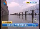 海上风电 大力推进绿色增长