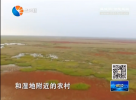 国内外大咖齐聚一堂 共话湿地发展