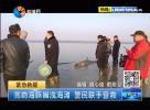 宽吻海豚搁浅海滩 警民联手营救