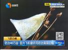 防治40萬畝 直升飛機撒農藥防治美國白蛾