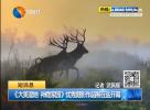 《大美濕地 神鹿家園》優秀攝影作品展在鹽開幕