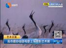 我市摄协组团观摩上海摄影艺术展