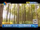 荒灘變綠洲 東臺林工創造沿海綠色奇跡