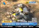 垃圾堆积如山 村民不满寻求帮助