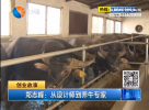 鄭志峰:從設計師到養牛專家
