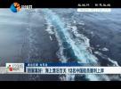 现场督办 : 回家真好!海上漂泊百天 12名中国船员顺利上岸