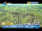 15市成立检察联盟  保护黄(渤海)湿地