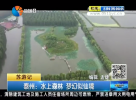 泰州:水上森林 梦幻似仙境