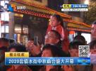 2020盐镇水街中秋庙会盛大开幕