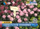 台创园菊花节正式开幕 市民纷纷拍照留念
